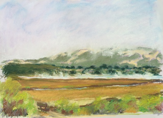 "Steaming Pickleweed Marshes Pastel 12""x16"""